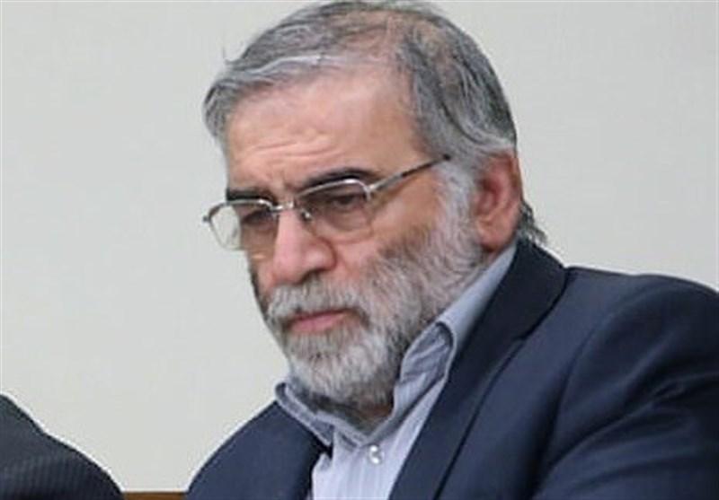 صوت صحبتهای شهید فخریزاده در مورد مذاکره با آمریکا/ ویدئو